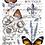 Thumbnail: Papillon