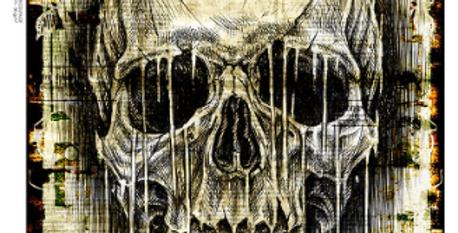 Illustrated Skull 3