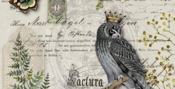 Owl Botanicals