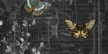 Mechanical Butterflies 1
