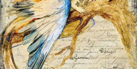 Bluebird Queen