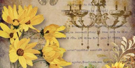 Elegant Sunflower