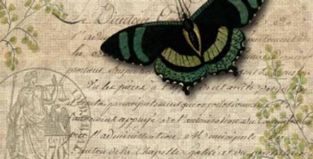 Butterfly Botanical
