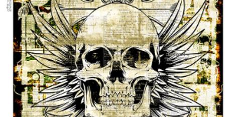 Illustrated Skull 2