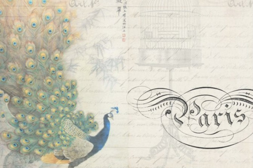 peacock_ephemera_decoupage_paper_horizon