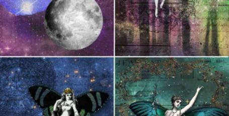 Fairy 4 Pack