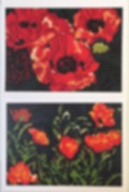 Orange Poppy Cards.jpg