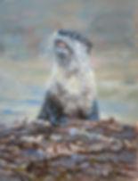 Otter_nonsense_11x14_oil.jpg