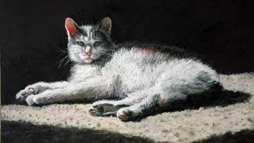 Barn-Cat.jpg