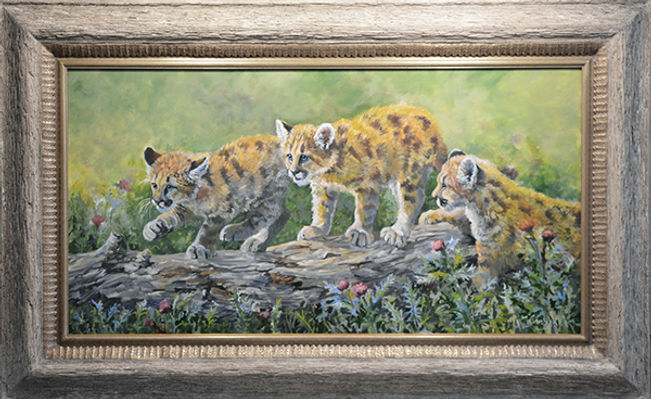 Triple Trouble cougar cubs 19 x 34.jpg