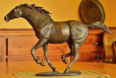 1-horse (6).jpg