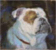 winston-the bulldog.jpg