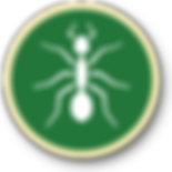 Ant-Icon-green-min.png