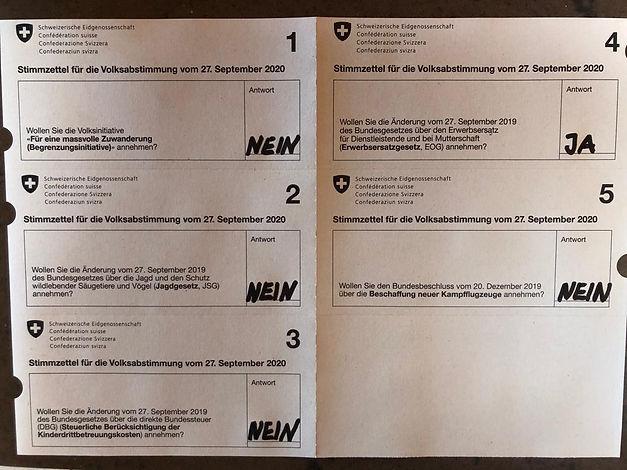 Abstimmung.jpeg