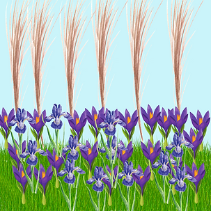 1 plant layering 7_png.png
