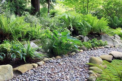 shady woodland garden.jpg