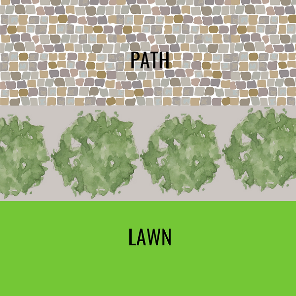 1 plant layering 1_png.png