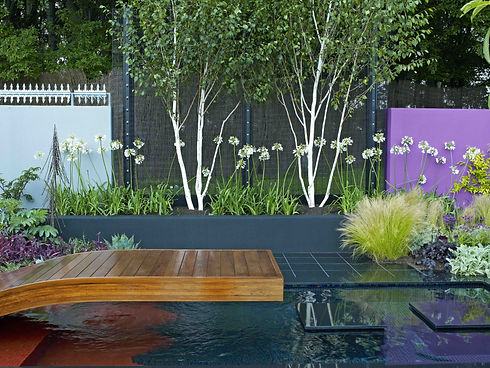 contemporary garden.jpg