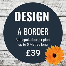 £39 DESIGN COVER.png