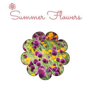 Best Summer Perennials.jpg