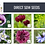 Thumbnail: Plant Selection