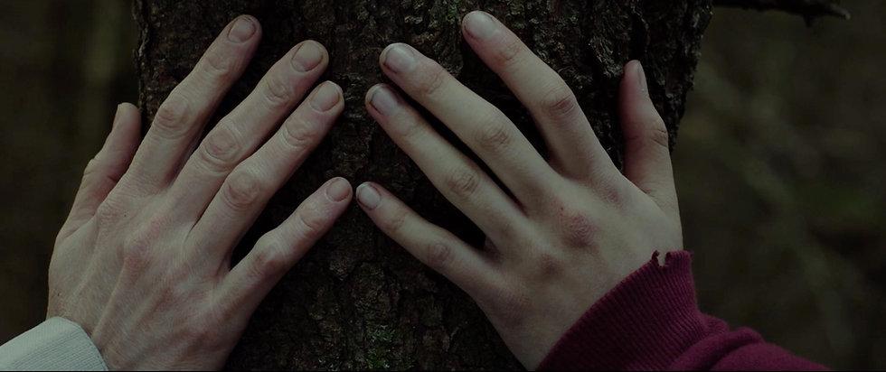 Hands on tree.jpeg