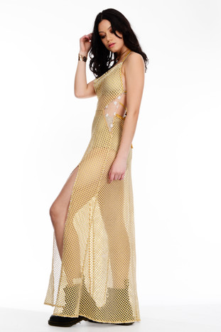 Gold Netted Mesh Dress Tie Up