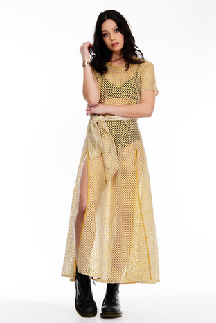 Gold Netted Dress With Sleeves