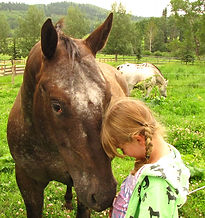Horses and kids.  Liberty Stables, Millarville Alberta. The Luaxophy Method.