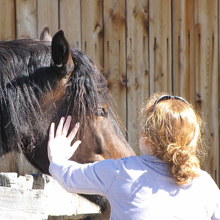Bridget and her horse, Star.  Millarville, AB. The Luaxophy Method.