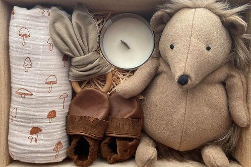 Hedgehog Baby Box
