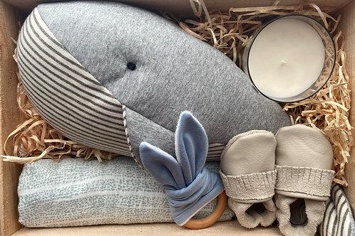 Whale Baby Box