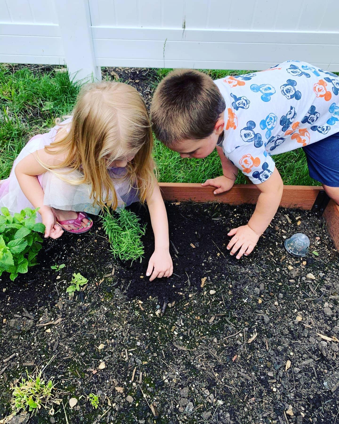 pp gardening