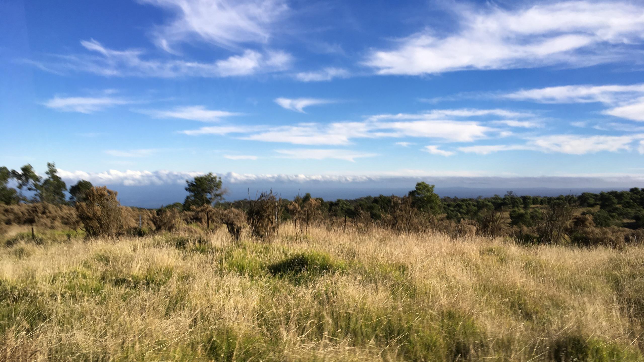 On Mauna Kea