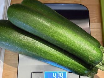 Zucchini Auflauf