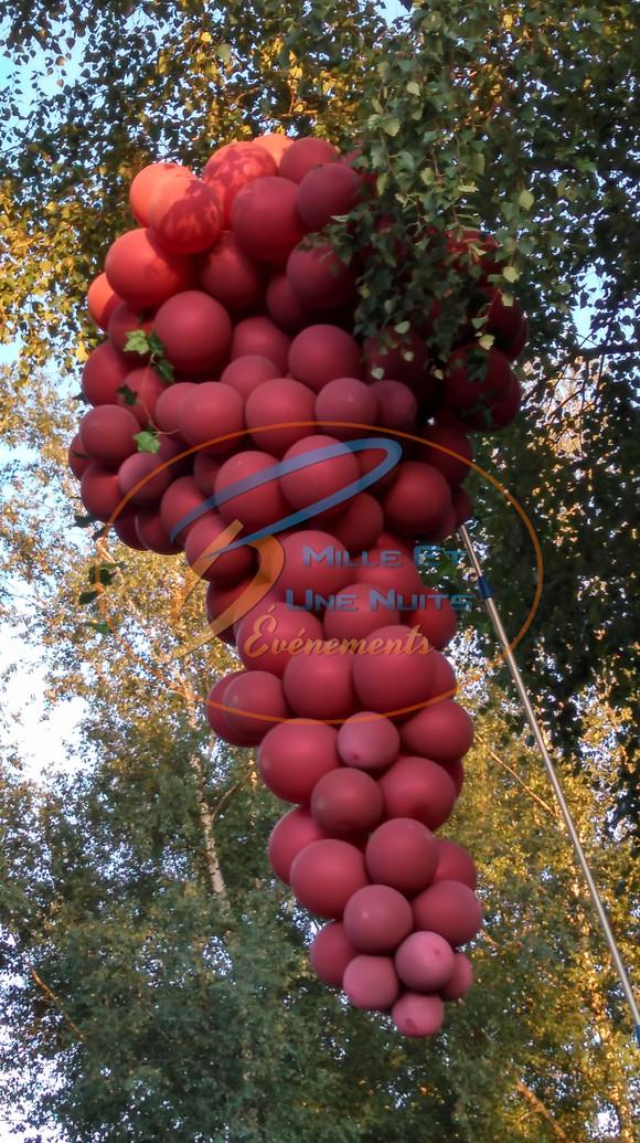 Décoration Grappe de Raisin en Ballon: en Bretagne (ille et vilaine, Fougères, Rennes, Vitré), Normandie, Pays de la loire
