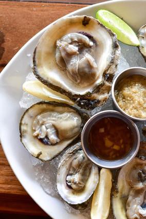 Gulf Sea Oysters