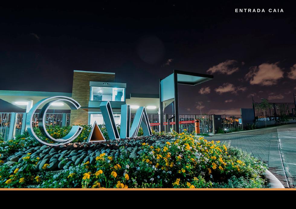 CAIA Set 2020-17.png