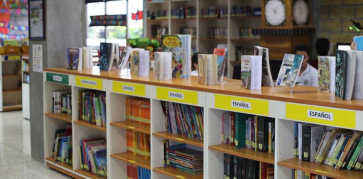 library-4.jpg