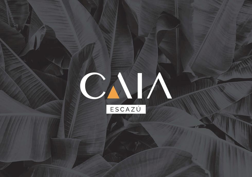 CAIA Set 2020-01.png