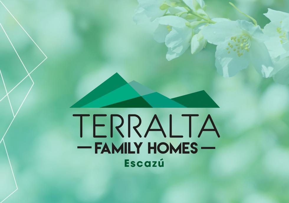 Terralta Set 2020-01.png