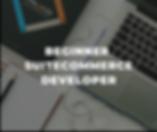 suitecommerce-developer-for-beginners.pn