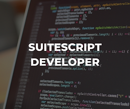 How to write SuiteScript in NetSuite