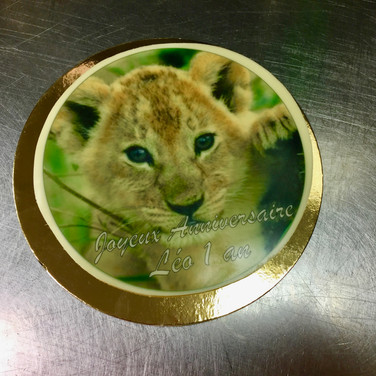 Lionceau