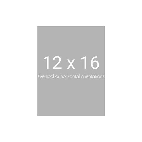 12 x 16