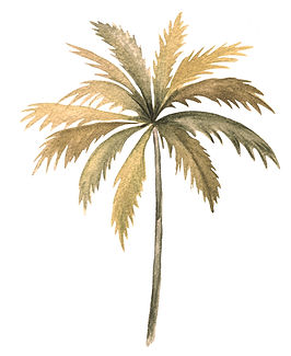 gold palm tree.jpg