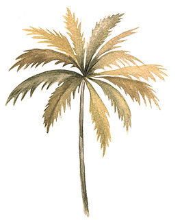 gold palm backwards.jpg
