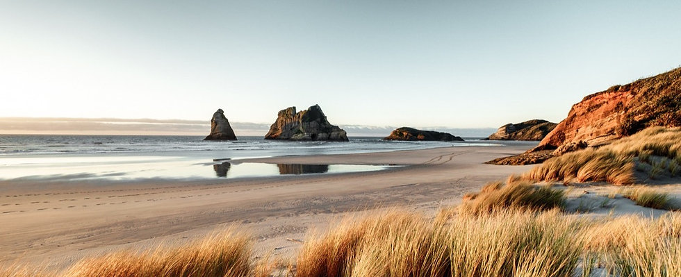 new-zealand-coastline-ocean_edited_edite