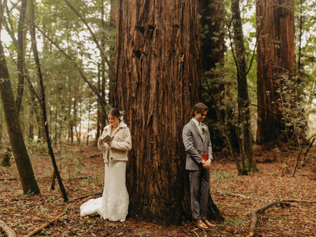 Ian + Ana | California Redwoods Wedding