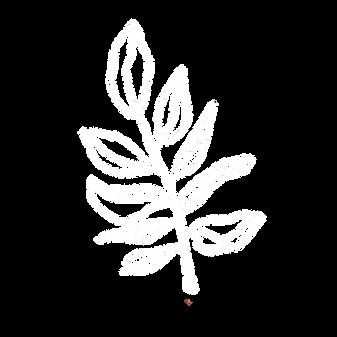 Botanical White49.png